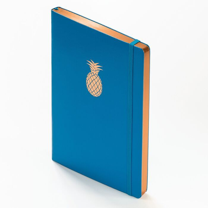 Notebook Medium (A5) Hardcover, 249 numbered pages, Azure with copper edge, plain