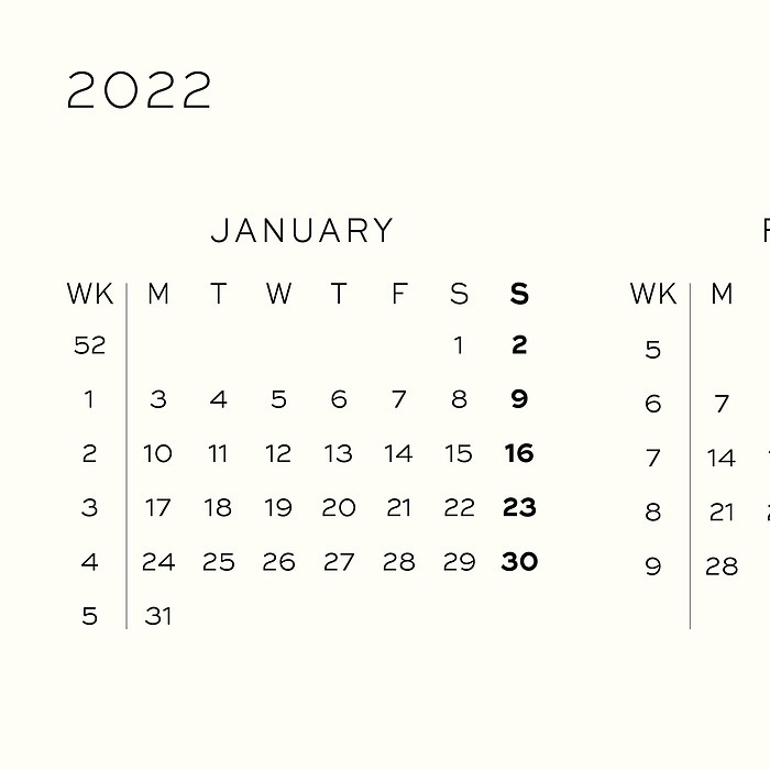 Daily Planner 2022, 12 months